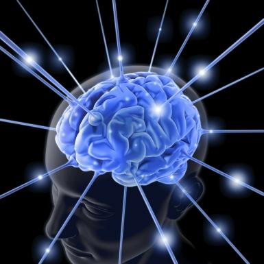 Entrenando nuestro cerebro para ser feliz